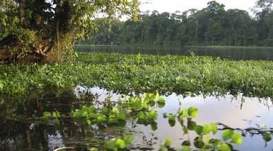 COSTA RICA Y PLAYA      -                     San Jose, Reserva Biológica Bosque Nuboso Monteverde                     Volcán Arenal, Mar Caribe