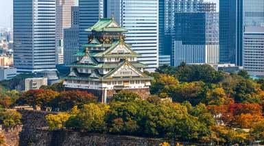 Japón a tu Aire + Japan Rail Pass - 8 Días