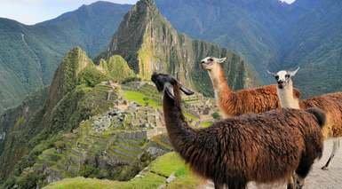 Viaje Organizado a Perú: Machu Picchu y el Lago Titicaca