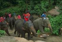 Alberghi a Thailandia