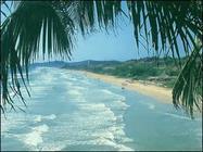 Hoteles en Isla Margarita