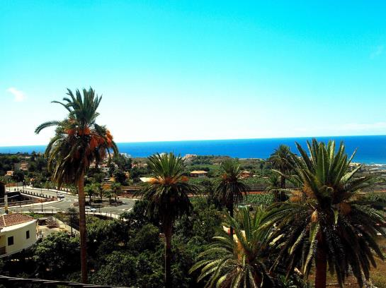 Hotel jardin concha en valle gran rey destinia for Hotel jardin concha la gomera