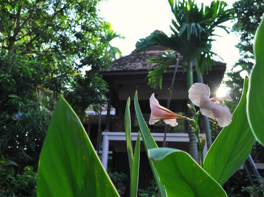 Resort The River Garden Siem Reap
