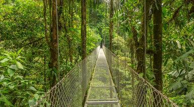 Costa Rica Salvaje y Playas del Caribe