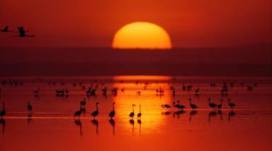 Senegal Esencial con Playas de Saly