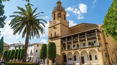 Patio De Arance -                             Malaga