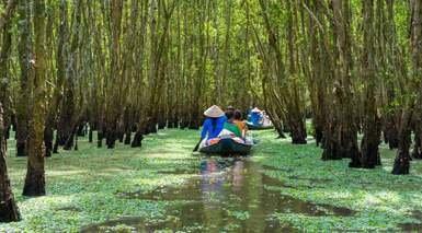 Vietnam con Visitas y Crucero y Playas de Tailandia