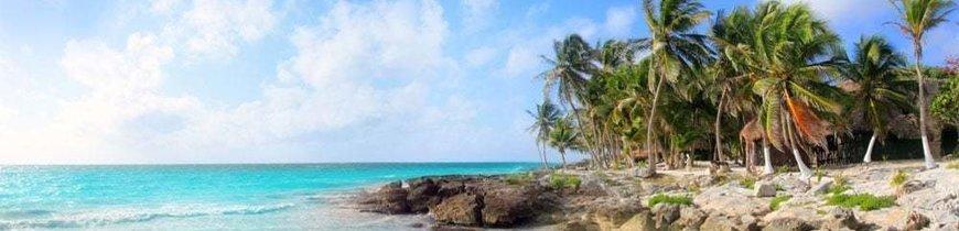 Riviera Maya en Todo Incluido: Especial Salida 9 Enero - 6 Noches