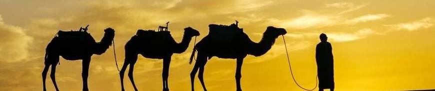 Tesoros Imperiales y Maravillas del Desierto en 4x4