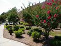 Courtyard Danville