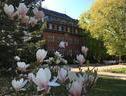 Gäste Und Tagungshaus Am Glockengarten