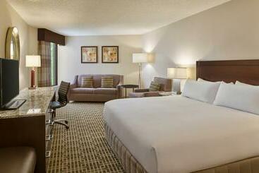 Doubletree By Hilton Houston Intercontinental Airport - Houston