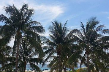 Boulevard - Miami Beach