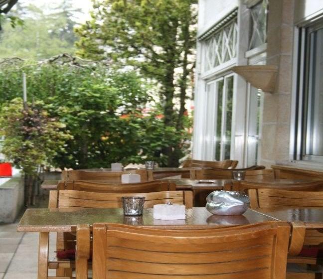 Hotel Hostellerie De La Vendee Ginebra