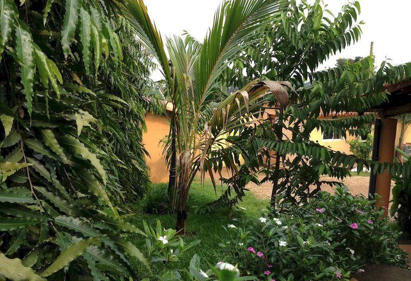 Jardin tropical buyumbura las mejores ofertas con destinia for Aparthotel jardin tropical